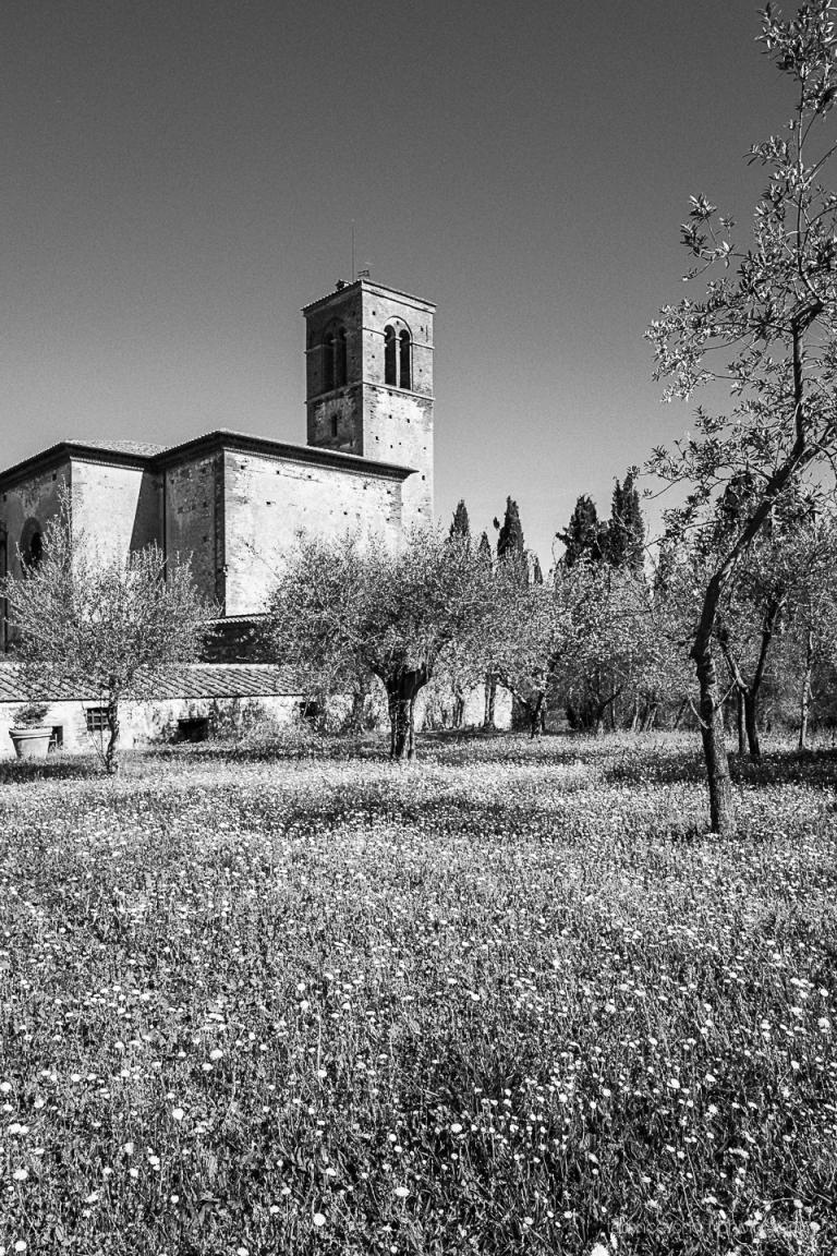 Monastero di Sta Anna in Camprena